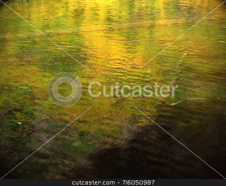 Reflections stock photo, Trees reflecting on water. by Mike Norton