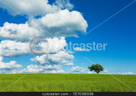 Tree, Sky and Field stock photo, Tree, Sky & Field by Jon Stokes