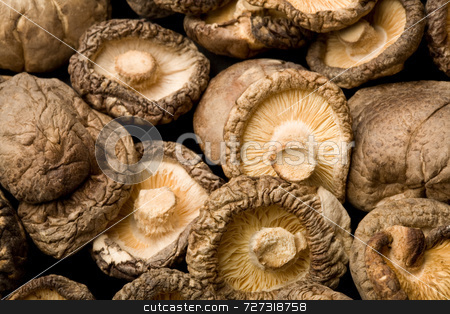 Dried Shiitake Mushrooms  stock photo, Dried Shiitake Mushrooms (Lentinula edodes) by Jon Stokes