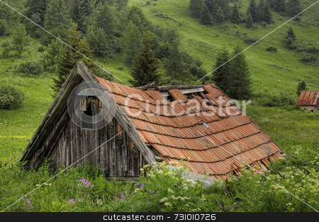Old hut stock photo, Old hut in the middle of an alpine meadow by Massimiliano Leban
