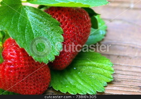 Two Glistining Strawberries On Weathered Wood stock photo, 2 glistining Strawberries placed on weathered wood. by Lynn Bendickson