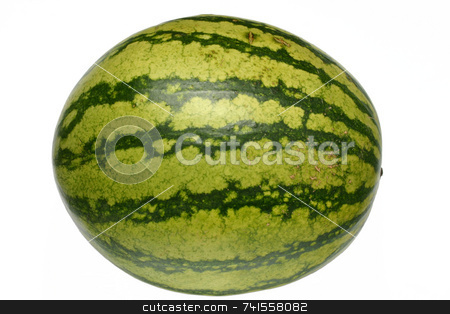 A watermelon isolated on white background stock photo, A watermelon isolated on white background by Stephen Rees