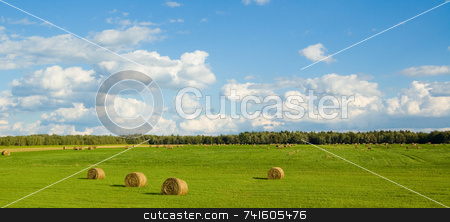 Panoramic green field stock photo, Panoramic landscape of a green field with bales by Jean Larue-Frechette