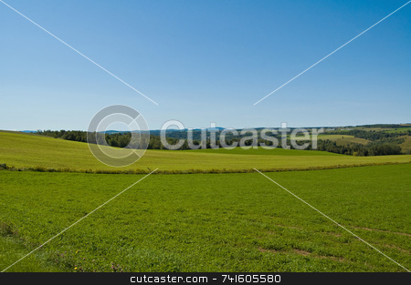 Green fields stock photo, Green field in easterns township by Jean Larue-Frechette