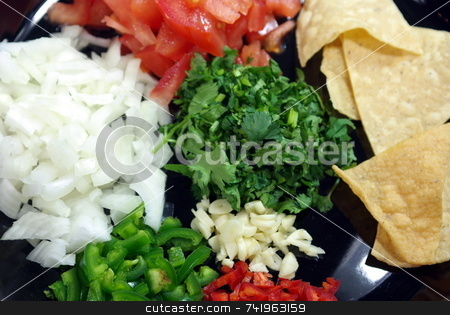 Chopped Ingidients For Hot Salsa stock photo, Ingedients all cut and ready to make a great salsa. by Lynn Bendickson