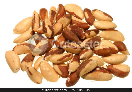 Brazil nuts stock photo, Brazil nuts by Stephen Rees