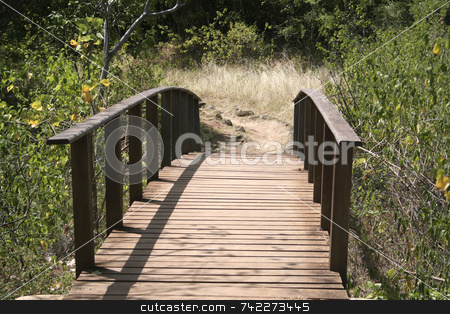 Wooden Bridge stock photo, A wodden bridge on a path in Fernando de Noronha - Brazil. by Daniel Wiedemann