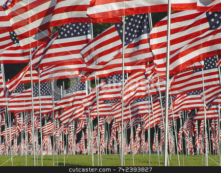 Flags stock photo, Kennesaw State Park Georgia over 3000 flags were put up to remember all that died 0n 9/11 in New York by Jack Schiffer