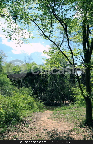 Walking path seanery stock photo, Great day for a walk inthe woods by Jack Schiffer