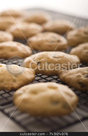 Fresh home made cookies on a cooling rack stock photo, Cookie, cooling, fresh, chocolate, chip, rack, warm, hot, baked, home-made, smell, aroma by Vince Clements