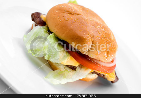 Juicy hamburger stock photo, A juicy hamburger on a white plate by Vince Clements