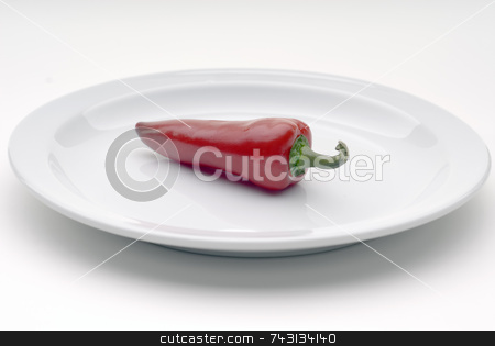 Single red chile pepper on a white plate stock photo, Single red chile pepper on a white plate by Vince Clements