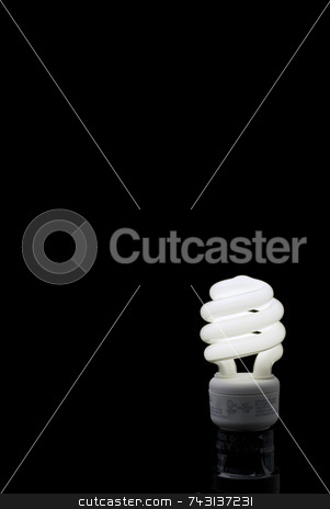 Compact Fluorescent bulb Vertical stock photo, Compact Fluorescent bulb against a black backround with plenty of space for type. by Vince Clements