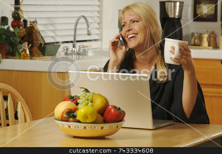 Woman in Kitchen on Cell Phone  stock photo, Woman smiling, in her kitchen on cell phone sitting in front of laptop. by Andy Dean
