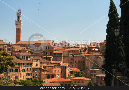 Siena, Italy stock photo,  by Greg Peterson