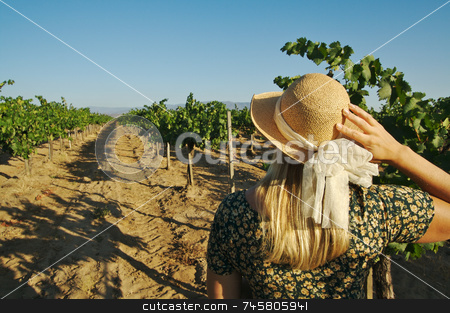 Beautiful Woman Strolling at a Winery stock photo, Beautiful Woman Strolling at a Winery on a Spring day. by Andy Dean