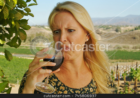 Shocked Attractive Woman Sips Wine stock photo, Shocked Attractive Woman Sips Wine at a Winery in the country. by Andy Dean