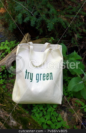 Try Green  When Shopping stock photo, Shopping bag made out of recycled materials, replaces plasic shopping bags. by Lynn Bendickson