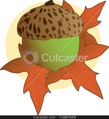 Acorn stock photo, A single acorn laying on some leaves by Maria Bell
