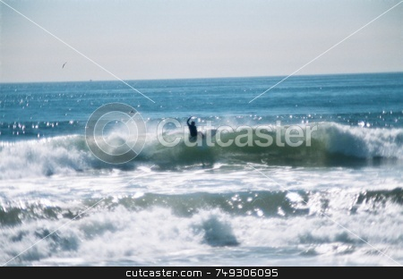 Surfing stock photo, A surfer on top of a wave by Rob Wright