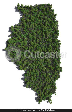Illinois in Trees stock photo,  by Allan Tooley