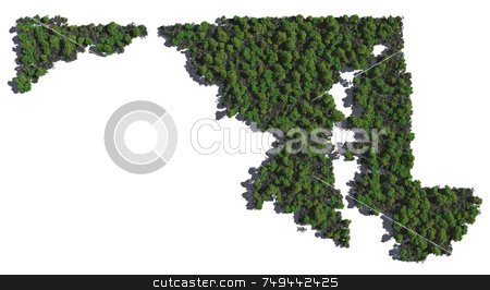 Maryland in Trees stock photo,  by Allan Tooley