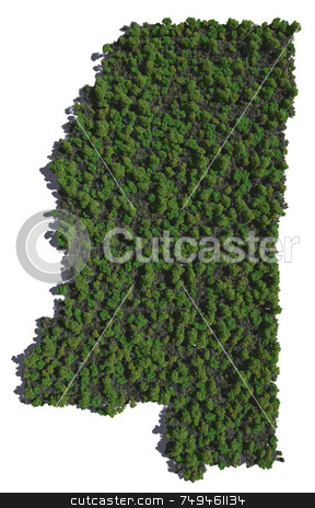 Mississippi in Trees stock photo,  by Allan Tooley