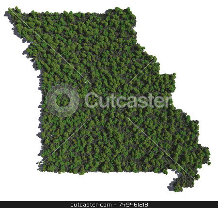 Missouri in Trees stock photo,  by Allan Tooley