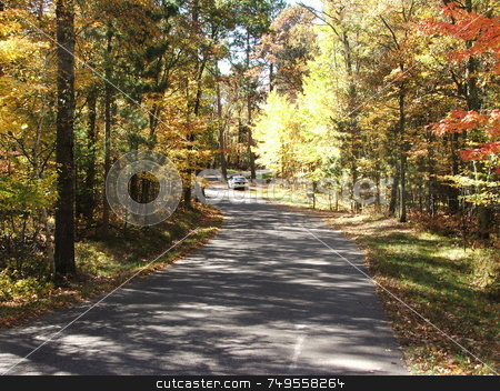 Colorful Fall Leaves stock photo, This blacktop road around Kimble Lake in north central Minnesota provides a colorful glimpse of fall foliage. by Dennis Thomsen