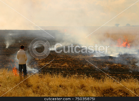 Field On Fire stock photo, Fields are burning in the turkish countryside by Kobby Dagan