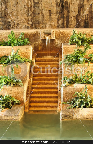 Modern Fountain stock photo, A lush modern fountain mixed with plants and steps by Kevin Tietz