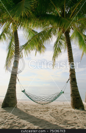 Hammock stock photo, Hammock at the beach hanging between two coconut trees by Jonas Marcos San Luis