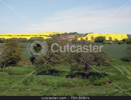 Rural landscape stock photo, Rural countryside landscape of North Yorkshire Moors National Park, England. by Martin Crowdy