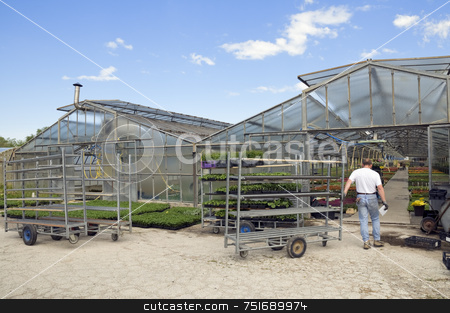 Greenhouse stock photo, Man pulling a cart in a glasshouse to load plants by Massimiliano Leban