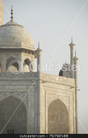 Taj Mahal Dome Detail  stock photo, Taj Mahal close Up Dome by A Cotton Photo