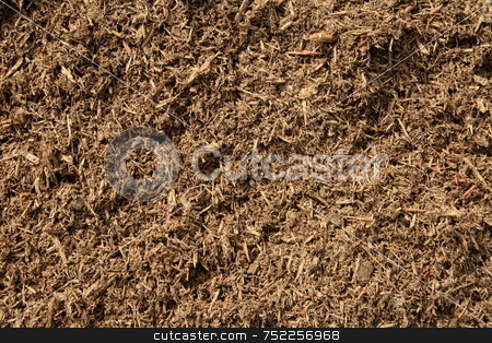 Garden Mulch stock photo, Close-up of shredded bark used as mulch in gardens, by Tom and Beth Pulsipher