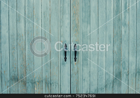 Close-up Closed Door stock photo, Close-up of a set of closed double doors by Richard Nelson