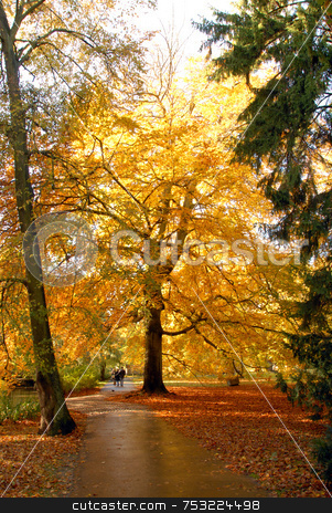 Autumn in an park stock photo, Autumn in an park with yellow, green, brown and orange tree by Joanna Szycik