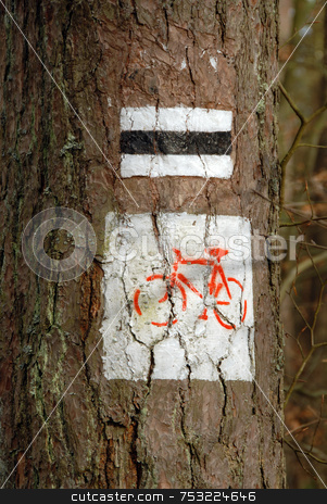 Sing on bike road stock photo, Bike trail sign painted on the tree, europe, poland by Joanna Szycik