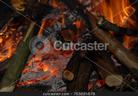 Camp fire stock photo, Photo of camp fire - useful as background by Joanna Szycik
