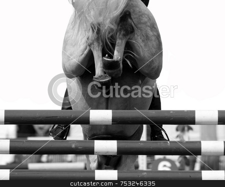 Horse Jump stock photo, The backside of a horse jumping over a fence. by Lucy Clark