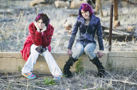 Girls on a Wall stock photo, Two Fashion Girls Sitting on a Cement wall by Scott Griessel