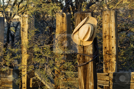 Cowboy Hat on a Post stock photo, Straw cowboy hat hanging on an old wooden post. by Scott Griessel