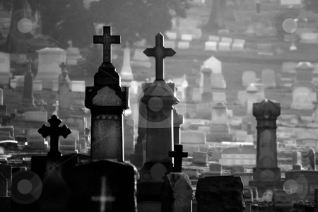 Misty Cemetary Black and White stock photo, Misty cemetary at dawn featuring headstones and memorials.  All names have been obscured. by Scott Griessel