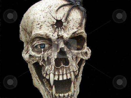 The Skull stock photo, An abstract creation of a human skull with a bullet hole in between the eyes, a tarantula hanging on the forehead, one eye and four vampire teeth. by Rebecca Mosoetsa
