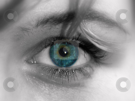 Staring Eye stock photo, Victoria's eye, eye brow and a piece of hair, selective color. by Lucy Clark