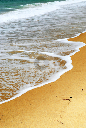 Sandy ocean beach stock photo, Ocean wave advancing on a sandy beach, natural background by Elena Elisseeva