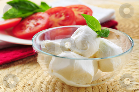 Bocconcini cheese stock photo, Bocconcini cheese, basil and sliced tomatoes - ingredients of traditional italian cuisine by Elena Elisseeva
