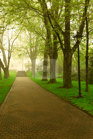 Foggy park stock photo, Path in a green foggy park in the spring by Elena Elisseeva