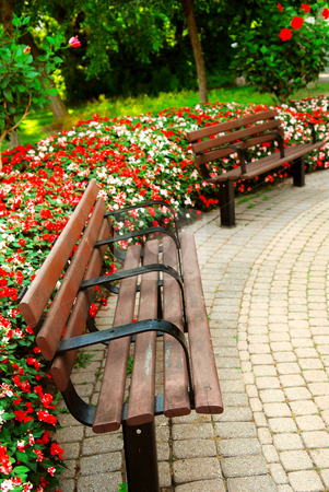 Formal garden stock photo, Garden with paved path, benches and blooming flowers in late summer by Elena Elisseeva